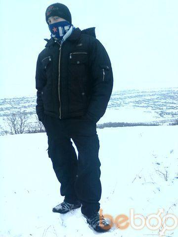 ���� ������� zasta, �������, �������, 36