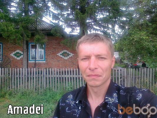 ���� ������� amadei, ���������, ������, 36