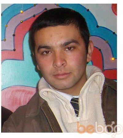 ���� ������� Sarvar, �������, ����������, 31