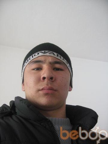 ���� ������� KAMIL, ������, ���������, 24