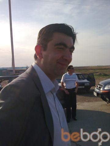 ���� ������� zulus, �������, ����������, 39