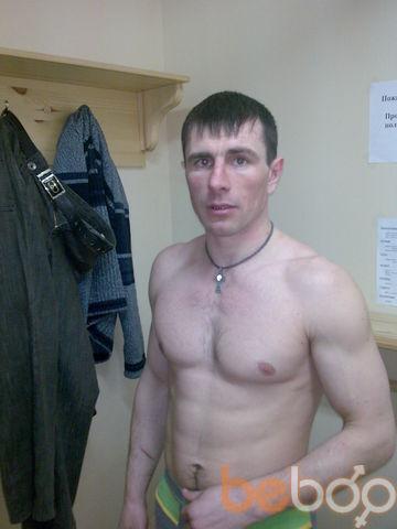 ���� ������� Vovchik, ����������, ������, 40