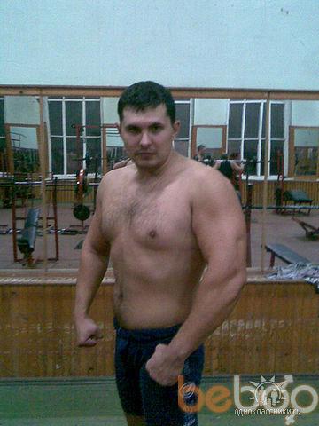 ���� ������� desechka, ������, �������, 36